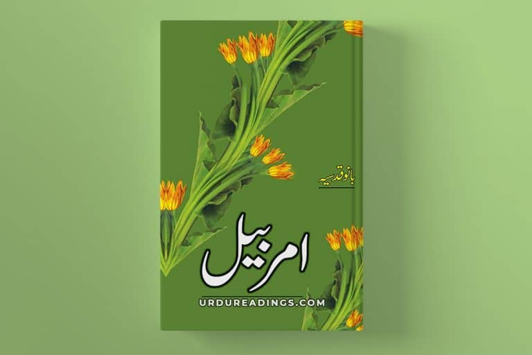 amarbail by bano qudsia download